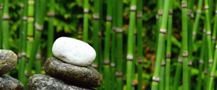 Meanings of Lucky Bamboo Numbers